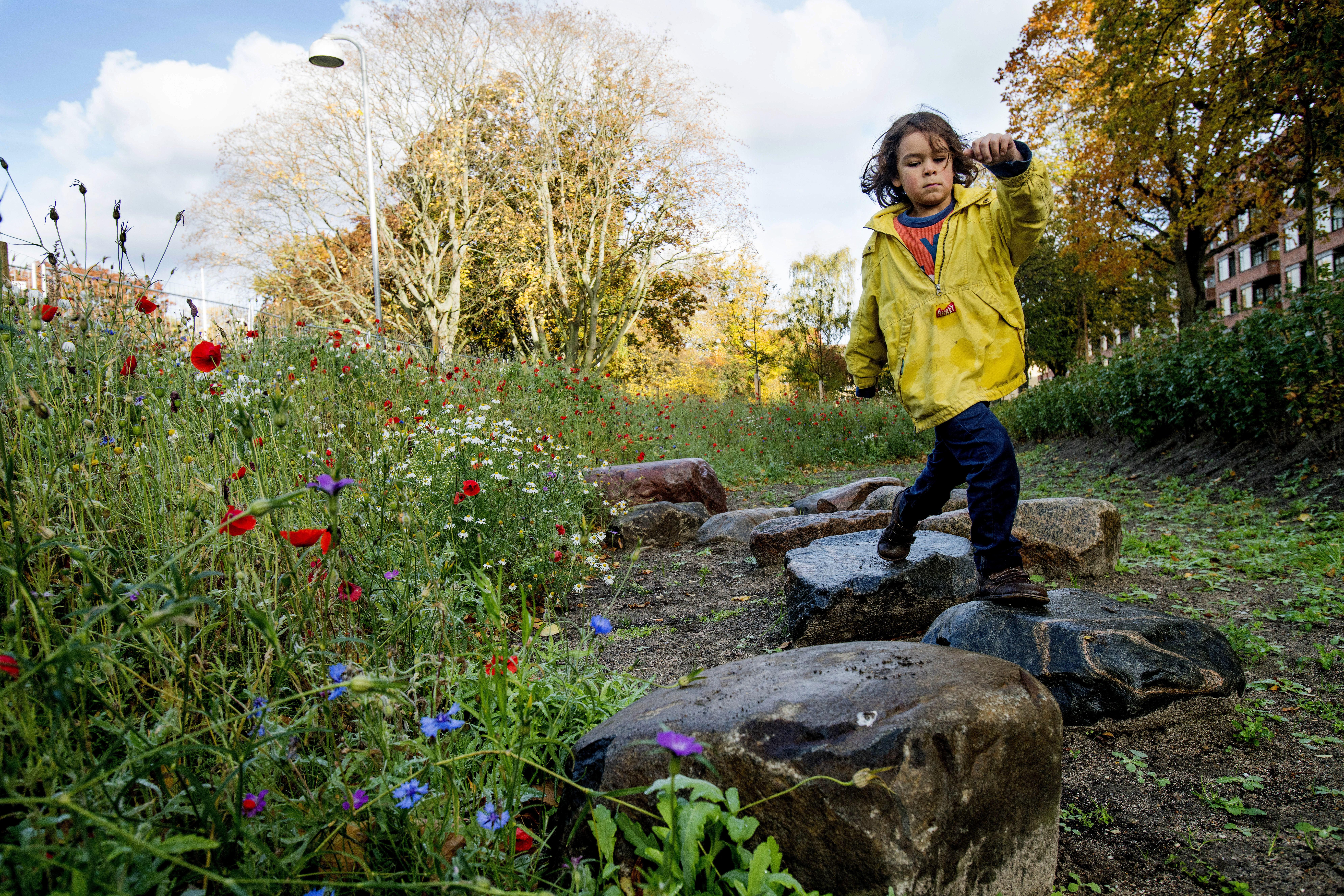 Henrik Gudmundsson: Fremtidens grønne byer